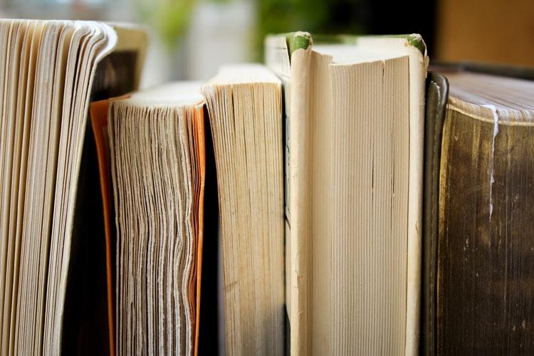 profissional-letras-livros